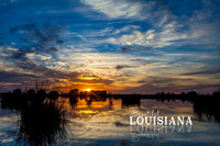 beautiful louisiana